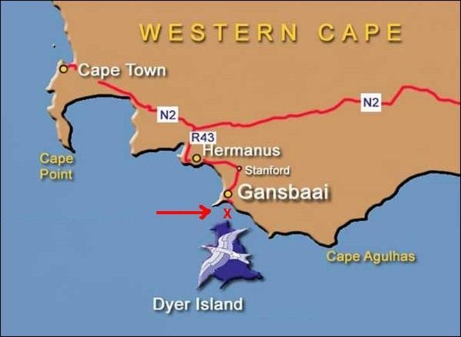 Gansbaai South Africa Map.Reddog Diving South Africa